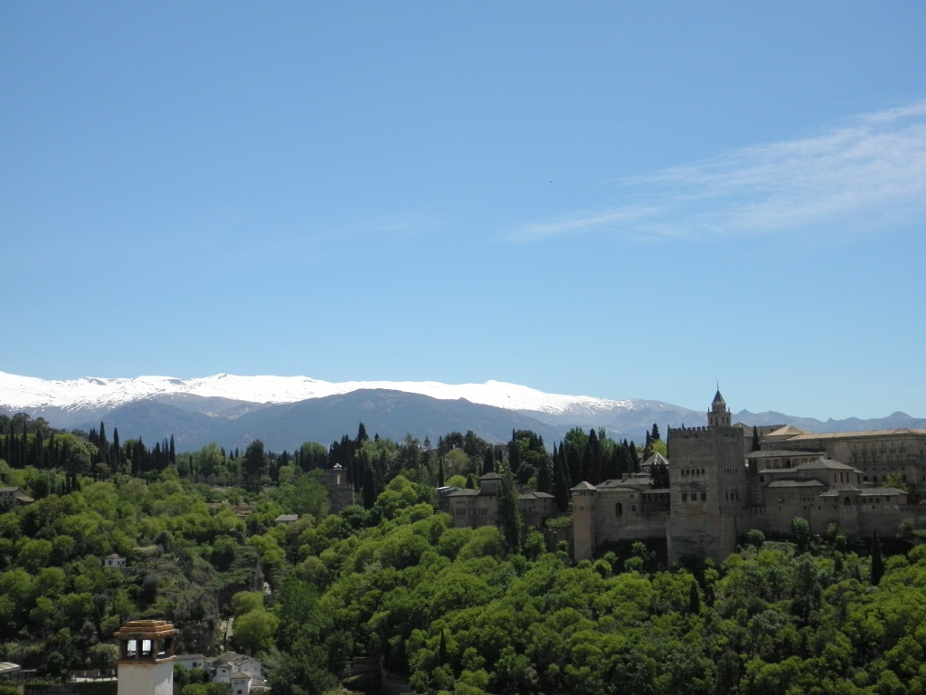A view of the Alhambra from the mosque garden